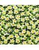 Flores bancas y amarillas en fondo verde